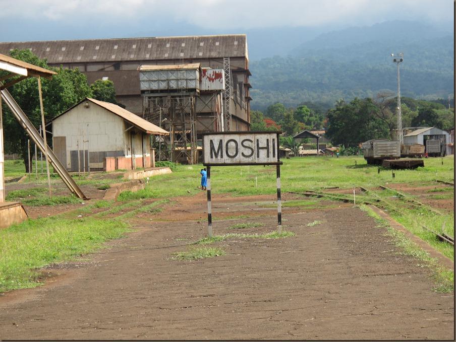 Moshi Town Walking Tour